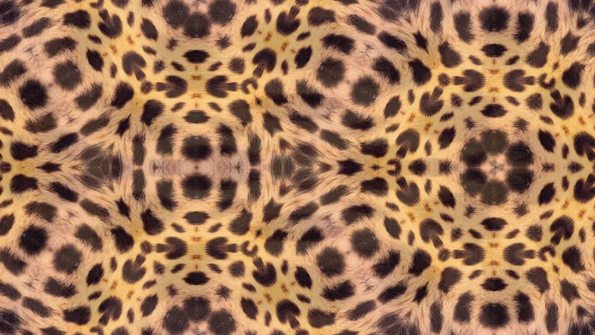Abstract background animation based on leopard pattern. Beautiful pattern based on the Nature, seamless loop. | Shutterstock HD Video #1014062732