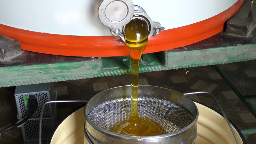 Elegant Honey From The Honey Extractor Is Filtered Through The Feed To Concrete
