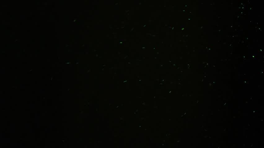 Particles green dust effect dark | Shutterstock HD Video #1014223292
