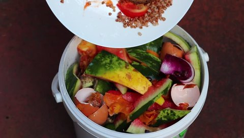 Food waste. Leftovers on the plate. Compost container for the kitchen. A Zero Waste: Composting and Recycling. Garbage sorting
