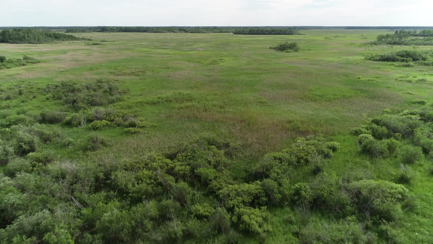Drone aerial shot over natural ecosystem, undeveloped prairie land with grass in the Great Plains. ProRes file, shot in 4K UHD.