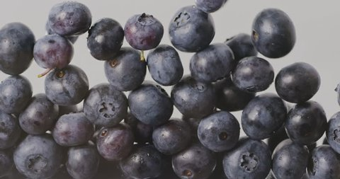 Filling the screen with a large ripe blueberries. Close-up of falling berries. Blueberry background. Slow motion. Full HD video, 240 fps, 1080p