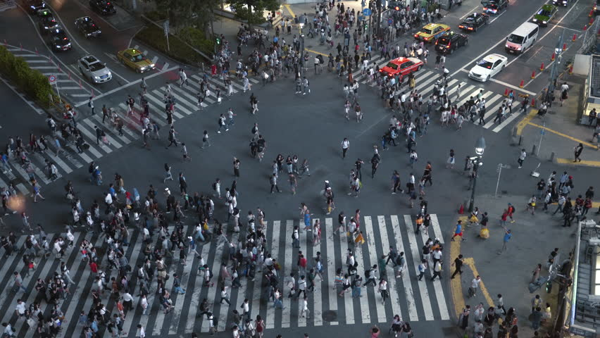 High Angle Shot of the Famous Shibuya Pedestrian Scramble Crosswalk with Crowds of People Crossing and Cars Driving. Evening in the Big City.