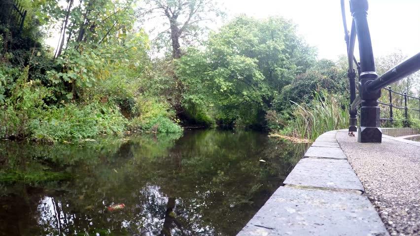 Shale River between trees in the Dartford, UK. Timelapse
