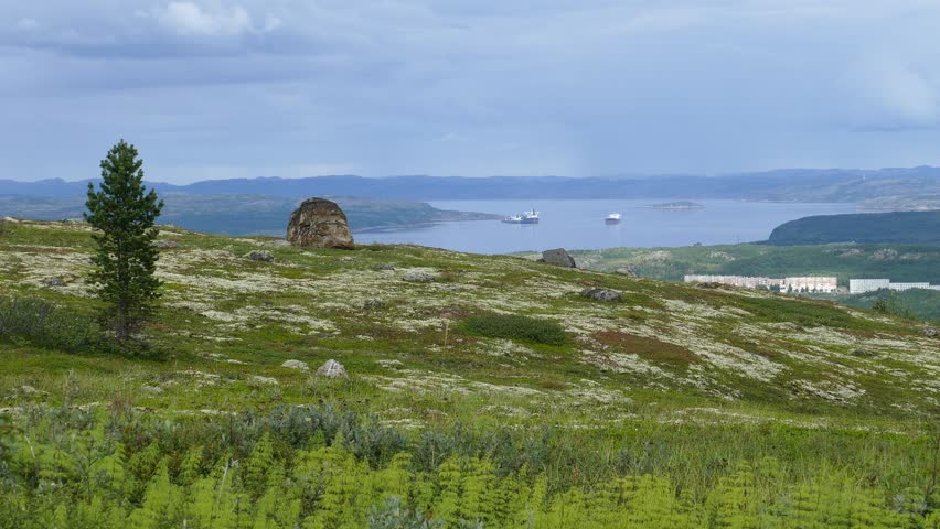 The tundra landscape - a moss-covered hillside with large stones and pine on the background of a large river with ships and buildings in the distance. Low mountains under a cloudy sky.