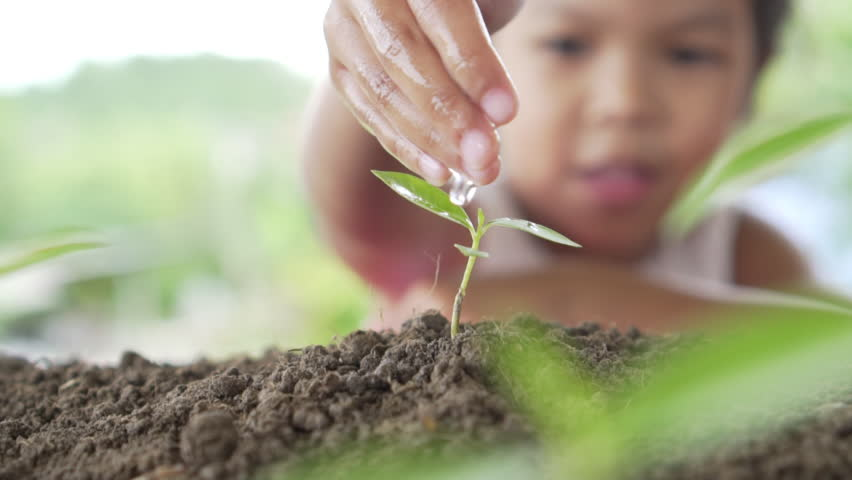 Close up of beautiful girl's hand watering a plant. Concept protecting the earth and environmental conservation. Slow motion shot | Shutterstock HD Video #1015218532