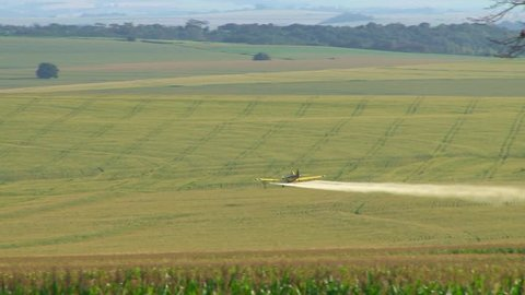 Long take of a crop duster over cornfield, maneuvers of round trip