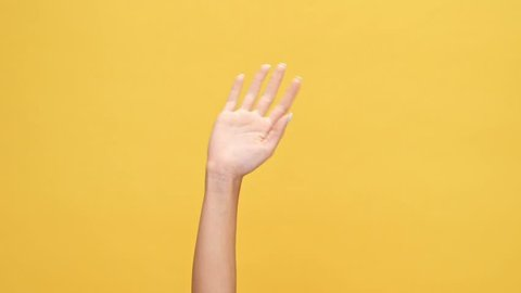 Woman hand waving at the camera over yellow background