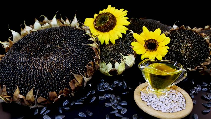 Minyak biji bunga matahari untuk Mengatasi Kulit Kering