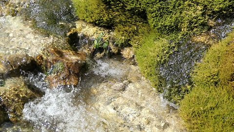 Detail of Travertine waterfall Dreinmuehlen (engl. three mills) at Nohn in  Vulcan Eifel region (Germany)