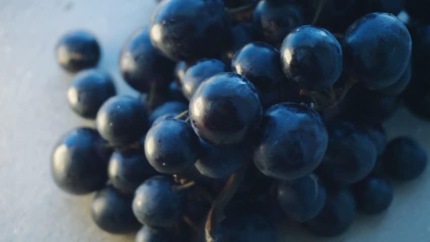 Fresh black grapes branch rotation. Close up. Slow motion