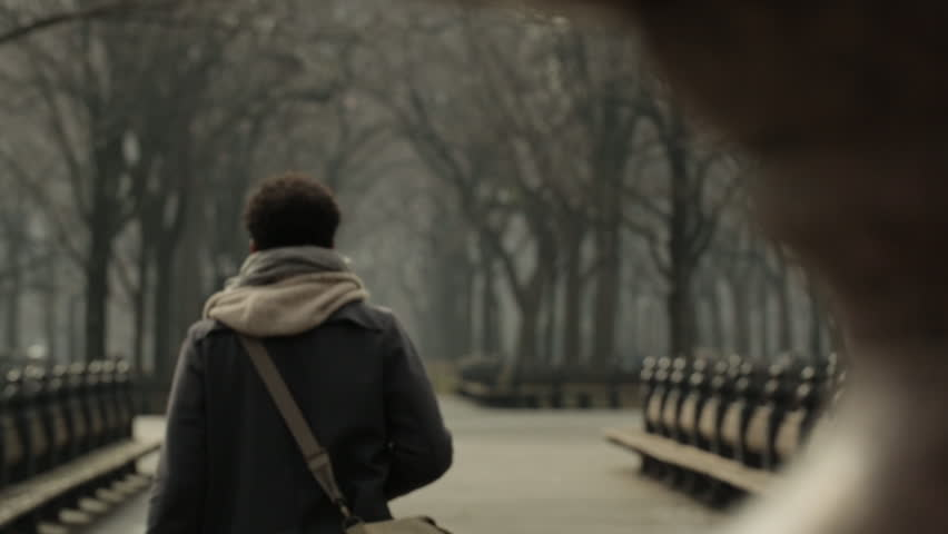 Rear view of man walking on footpath in park during winter | Shutterstock HD Video #1016207422