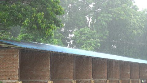 Heavy thunderstorm with rain wind bending trees in residential area at Bago, Myanmar