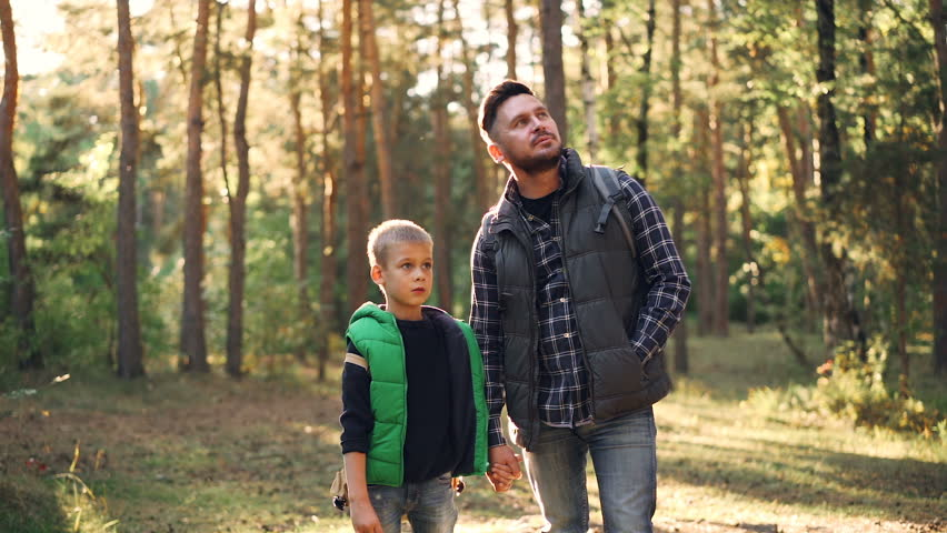 Slow motion of curious child and his father bearded guy watching wild nature standing in forest on sunny day during hiking adventure. Family and tourism concept.
