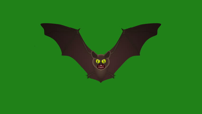 Bat flying, animation on a green background | Shutterstock HD Video #1016746462
