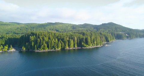 Giant Canadian lake-/seaside forest, near the infamous West Coast Trail on Vancouver Island