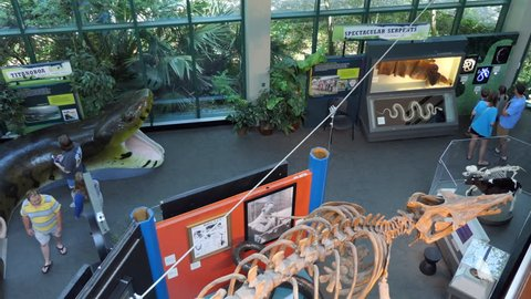 JACKSON, MISSISSIPPI / USA - JULY 2018: The MDWFP Museum of Natural Science in Jackson, Mississippi, United States. People, families, children during their visit