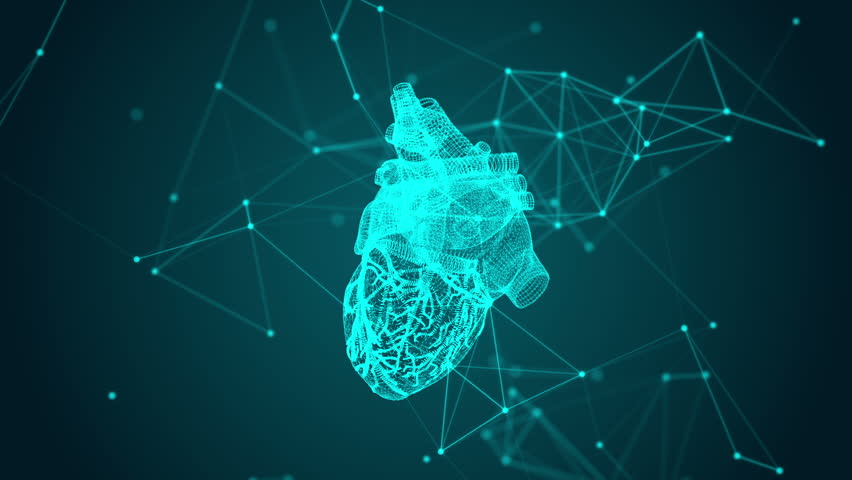 Virtual image of human heart. Modern methods of diagnostics of the heart | Shutterstock HD Video #1017392992