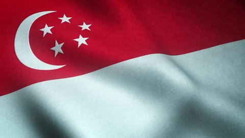 Realistic flag of Singapore waving with highly detailed fabric texture.