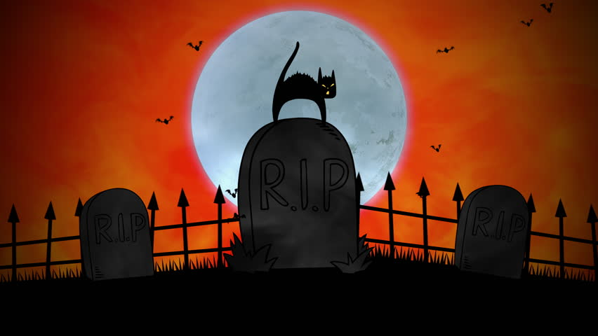 Halloween background animation with the cat on grave. Luxury and elegant dynamic style for holiday template   Shutterstock HD Video #1018138612