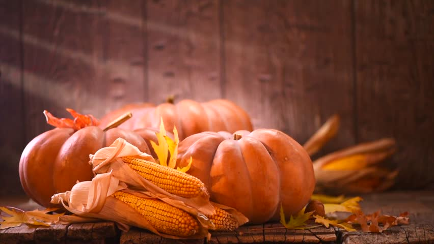 Thanksgiving Day. Pumpkin, Squash. Happy Thanksgiving Day wooden Table Background decorated with pumpkins, corn comb, candles and autumn leaves garland. Holiday Autumn festival scene, Fall, Harvest 4K   Shutterstock HD Video #1019095252