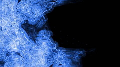 Video Background 2389: Abstract fluid forms pulse, ripple and flow (Loop).