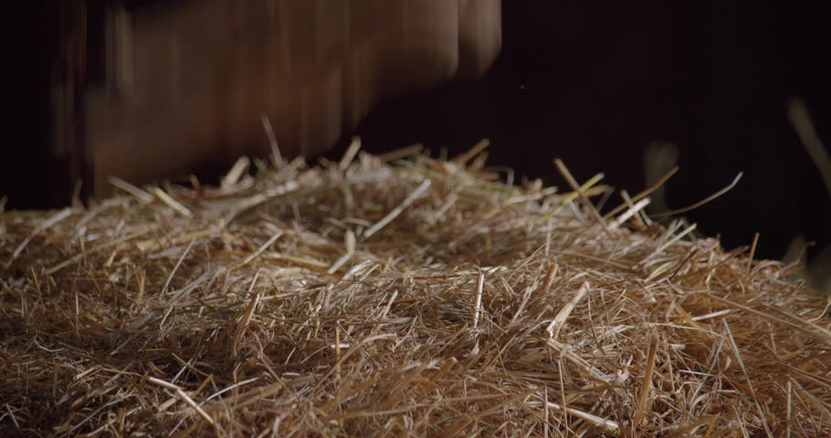 Gloves dropping on a haystack / Slow motion 1 | Shutterstock HD Video #1019161222