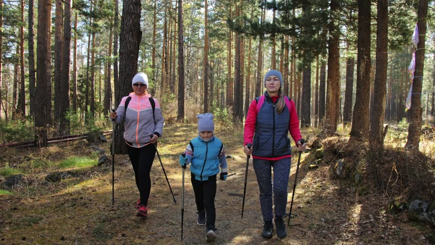Image result for trekking poles for kids