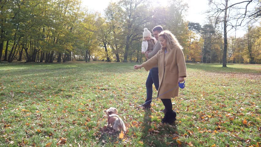 Adult parents walking holding hands in an autumn park with toddler baby and pet dog | Shutterstock HD Video #1019442382