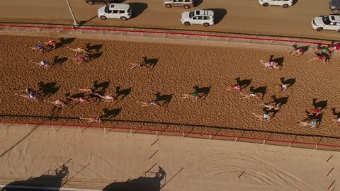 Aerial view over a group of camels during a race in the desert of Ras Al Khaimah, U.A.E.