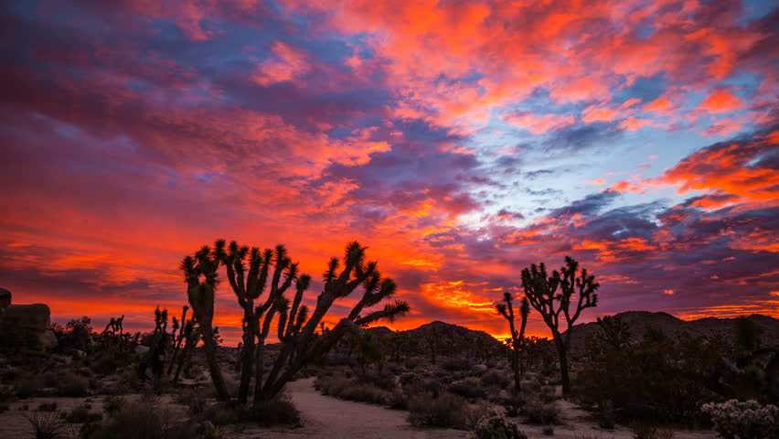 Timelapse of epic sunrise sky lit up by morning sun in Joshua Tree National Park, California