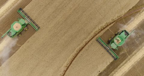 4K spectacular straight down zoom out rotating aerial view of two combine harvesters harvesting wheat