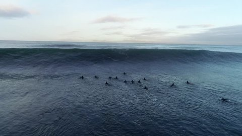 a group of surfers paddling over a big ocean wave surf session