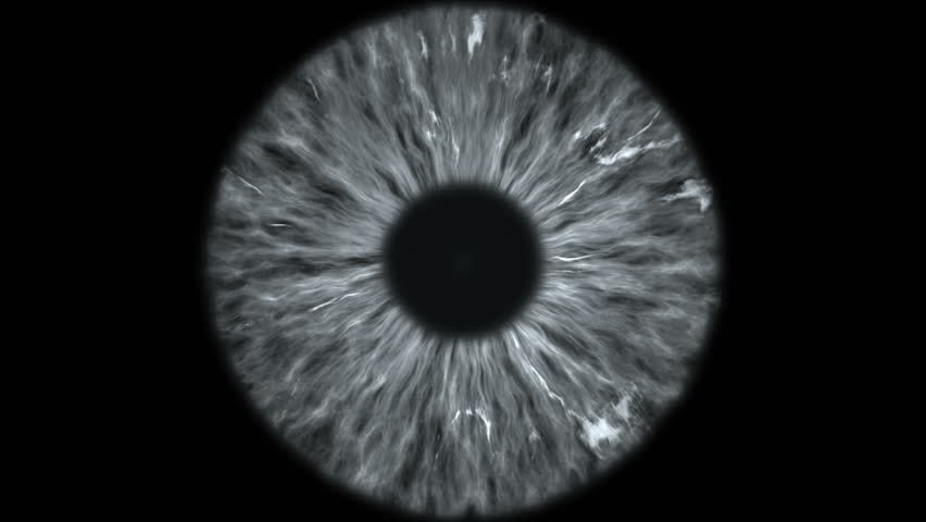 The gray eye is an extreme close-up of the iris and pupil, widening and tapering. #1021684822