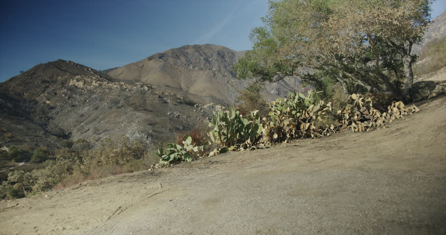 Gimbal shot of fire damage caused by Thomas Fire in Montecito hills Dec 2017. Santa Barbara county, California | Shutterstock HD Video #1021740502