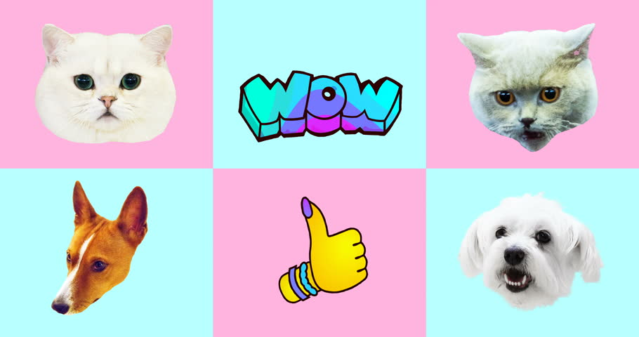 Animation gif set. Funny Animals. Cat and Dog gif faces | Shutterstock HD Video #1021997452