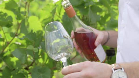 Rose wine being poured amongst vineyards by male hand