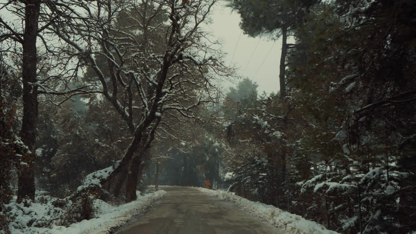 Driving on frozen forest road in a snow blizzard,Pov driving slow motion footage of a frozen countryside mountain forest road at the beginning of a  snow blizzard | Shutterstock HD Video #1022321992