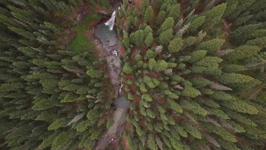 Fly Forward over Waterfalls on River in Colorado Mountains. Look Down on Top of Tall Trees in Forest with Drone. Move Upstream over Natural Flow of Water. Watch Meandering River in Nature. | Shutterstock HD Video #1022454022