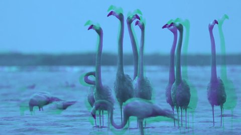 abstract interpretation of pink flamingos in the salt lagoons, ria largartos, mexico