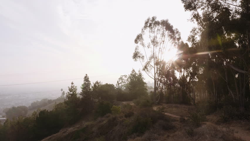 Panning Left on Smog Filled LA View with Sun. view from the top of Kenneth park panning left from sun in the trees to reveal the city of Los Angeles in smog   Shutterstock HD Video #1022698612