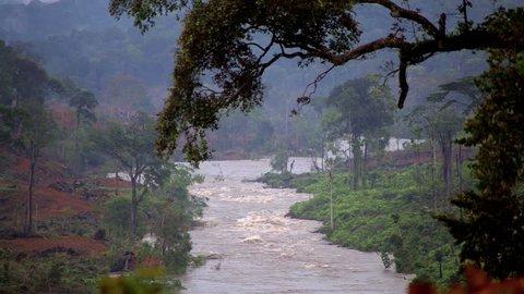 Rapid River in the tropical jungle. Equatorial Guinea. Forest, landscape, river. / River in Africa. Equatorial Guinea. Jungle.