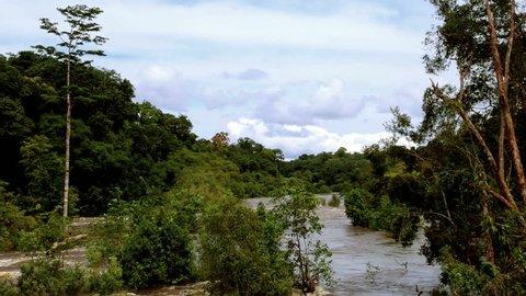 Wildlife Equatorial Africa, Equatorial Guinea. Beautiful landscape. Equator. Equatorial Guinea. River hidden among the trees of wild tropical jungle. / Wildlife Equatorial Africa, Equatorial Guinea