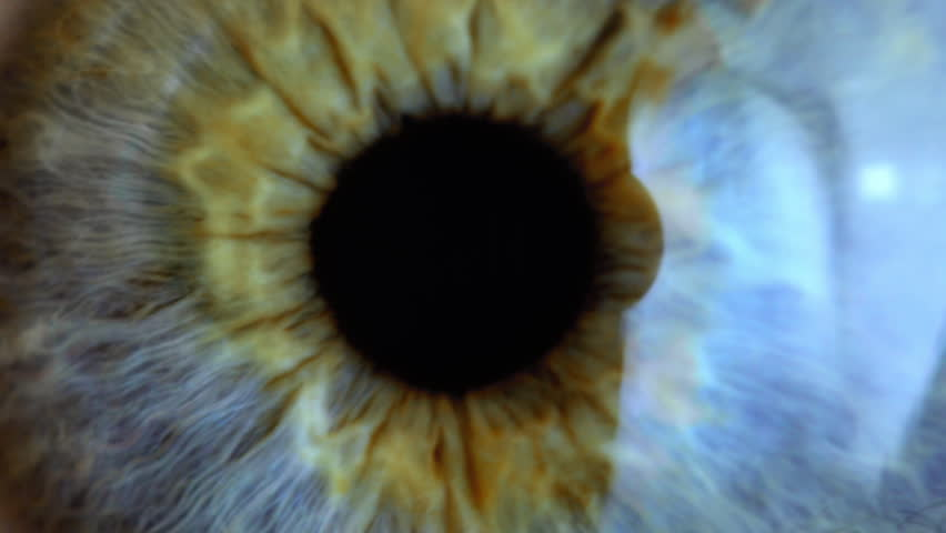 Extreme close up human eye iris  #1024275122