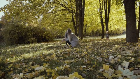 Two little kids with their mom spending funny time with dog in a park. 4K