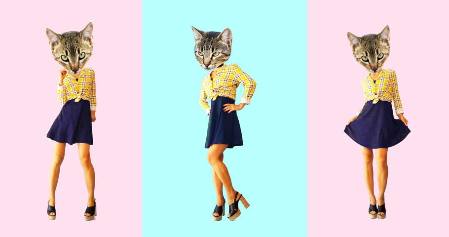 Minimal animation design. Vintage Kitty dancing
