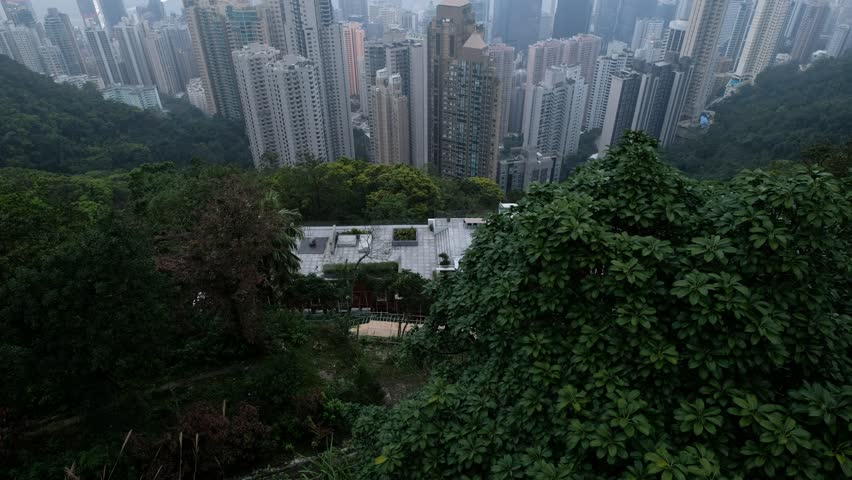 Hong Kong cityscape skyline view from Victoria Peak | Shutterstock HD Video #1025658542