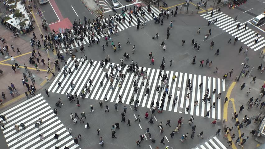 SHIBUYA,  TOKYO,  JAPAN - CIRCA MARCH 2019 : Aerial view around SHIBUYA scramble crossing.  Busy crowded area in Tokyo.  Wide view slow motion shot. #1025659022