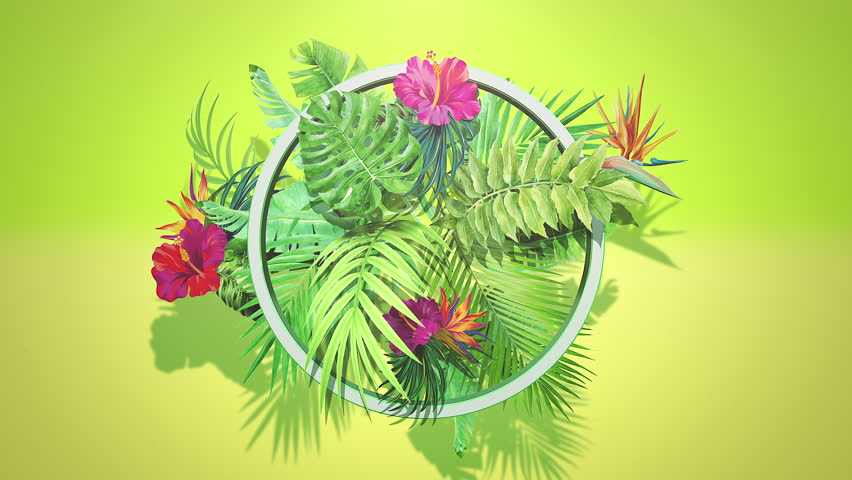 Closeup tropical flowers and leaf, summer background. Elegant and luxury dynamic 80s, 90s retro style animation footage | Shutterstock HD Video #1026152132