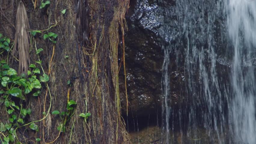 Scenic footage from La Tille Waterfall in St. Lucia. | Shutterstock HD Video #1026651512